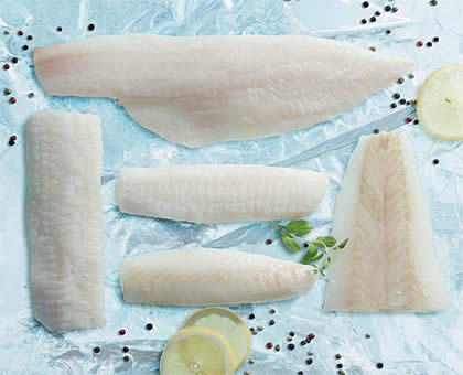 Wild Caught cod and haddock frozen fish